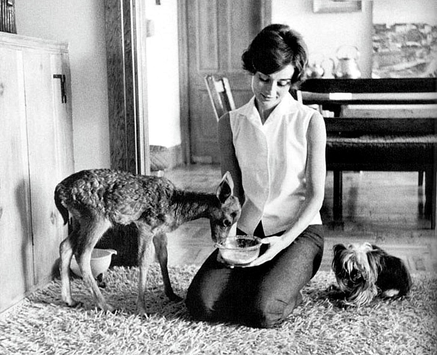 Celebrities And Their Unusual Pets_Audrey Hepburn