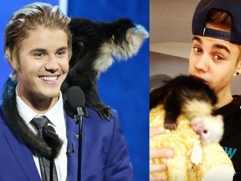 Celebrities And Their Unusual Pets_Justin Bieber