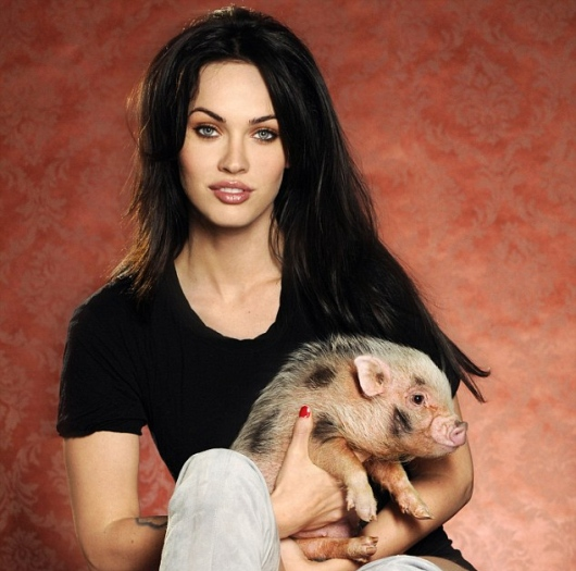 Celebrities And Their Unusual Pets_Megan Fox