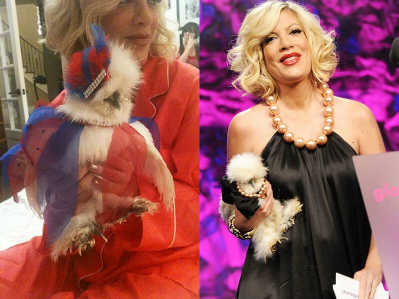 Celebrities And Their Unusual Pets_Tori Spelling