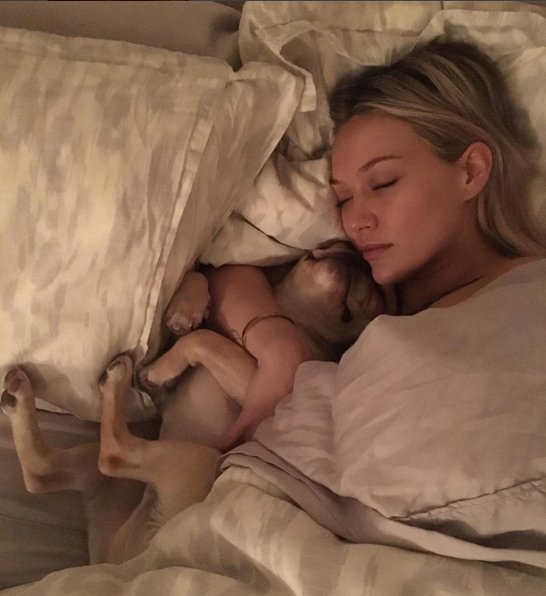 Hot Female Celebs With Their Pets_Hilary Duff