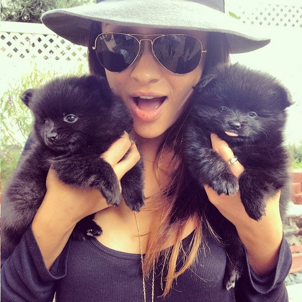 Hot Female Celebs With Their Pets_Shay Mitchell 1