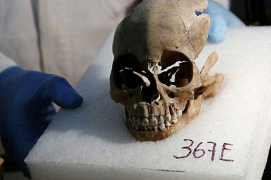 the oddest items people tried to smug_human scull fragments