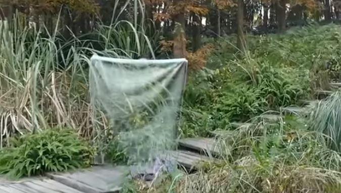 invisibility cloak_5